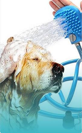 Pet Shampooing Service in Spokane, WA